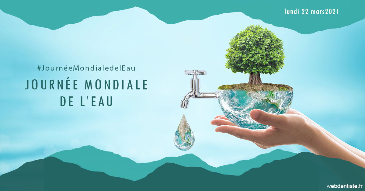 https://dr-charles-graindorge.chirurgiens-dentistes.fr/Journée de l'eau 1